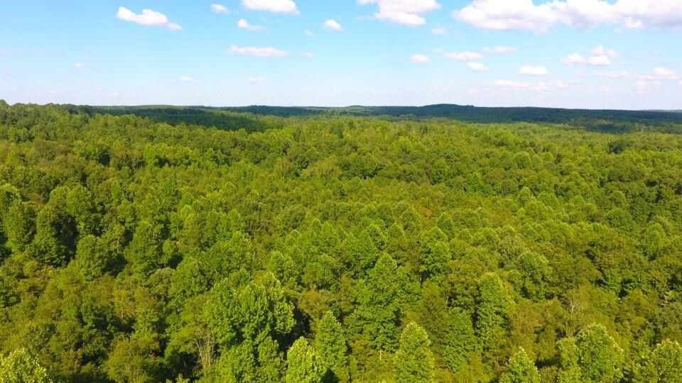 0 Deer Haven, Indian Mound, TN 37079 - Indian Mound, TN real estate listing