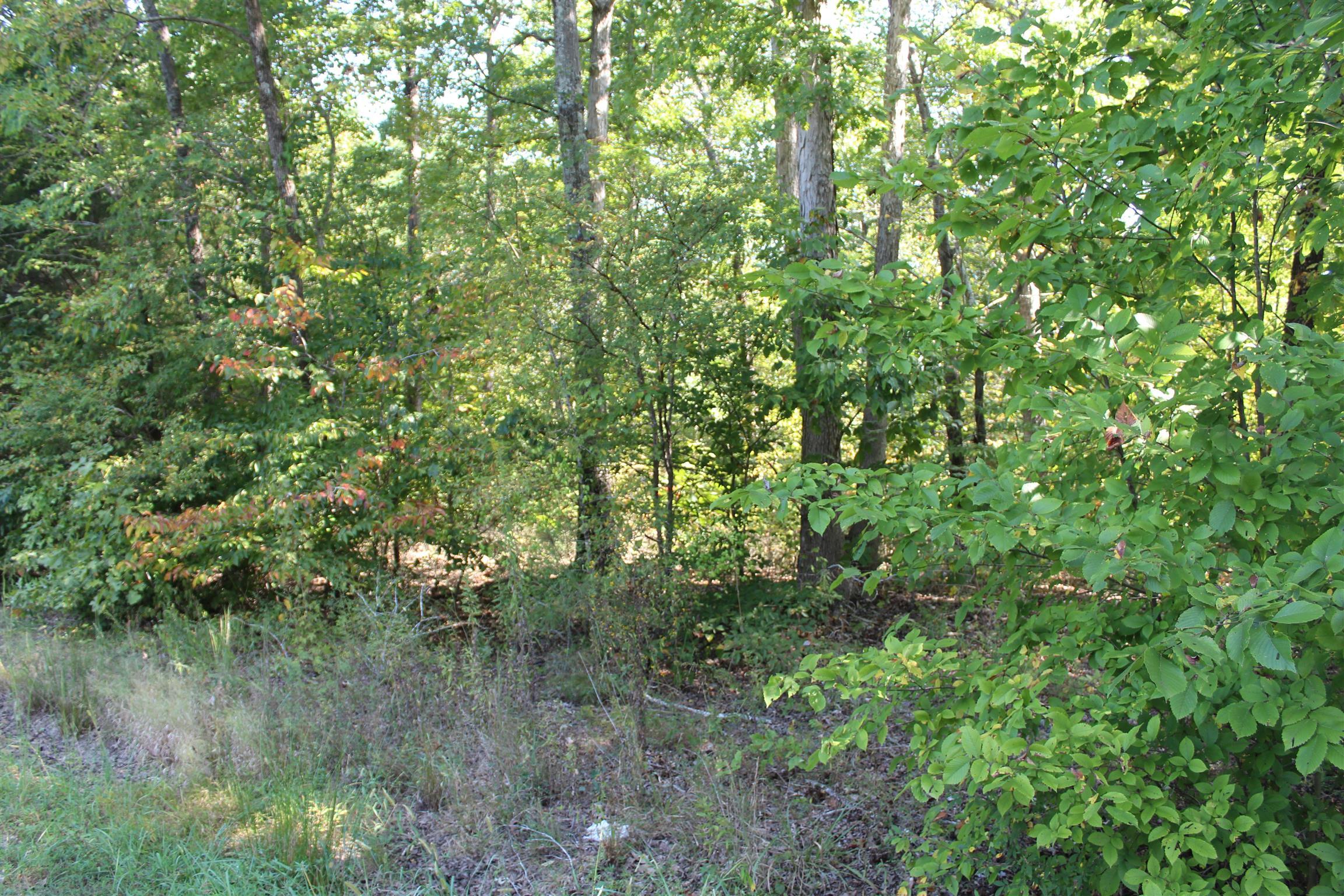 1 Hurricane Church Rd, Stewart, TN 37175 - Stewart, TN real estate listing