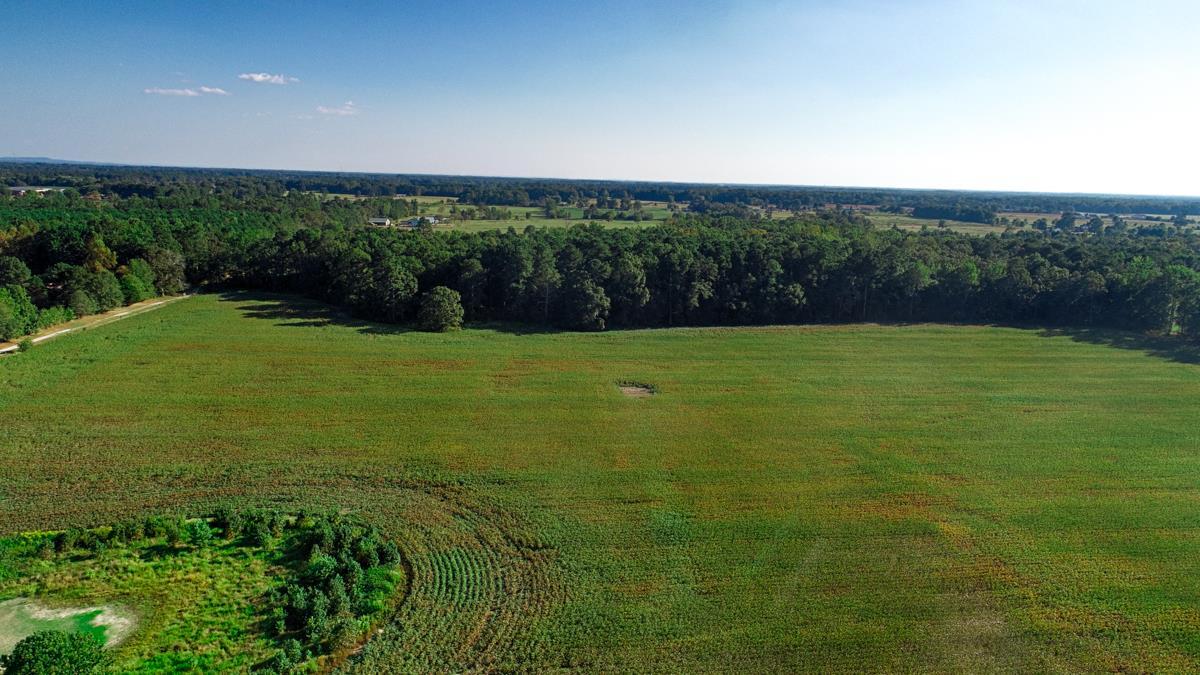 0 Bethel Road, Elkmont, AL 35620 - Elkmont, AL real estate listing