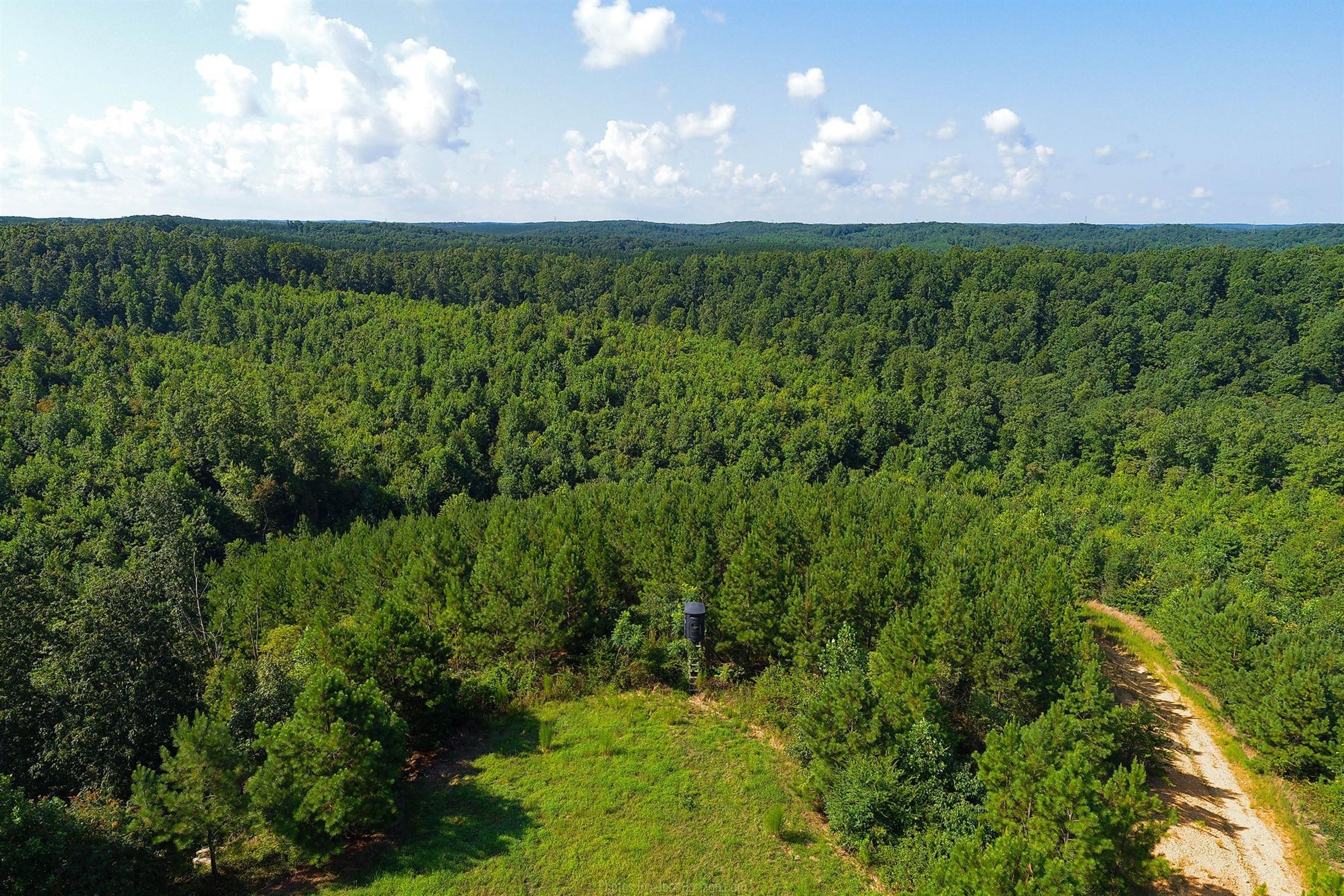 976 Bluewater Rd, Centerville, TN 37033 - Centerville, TN real estate listing