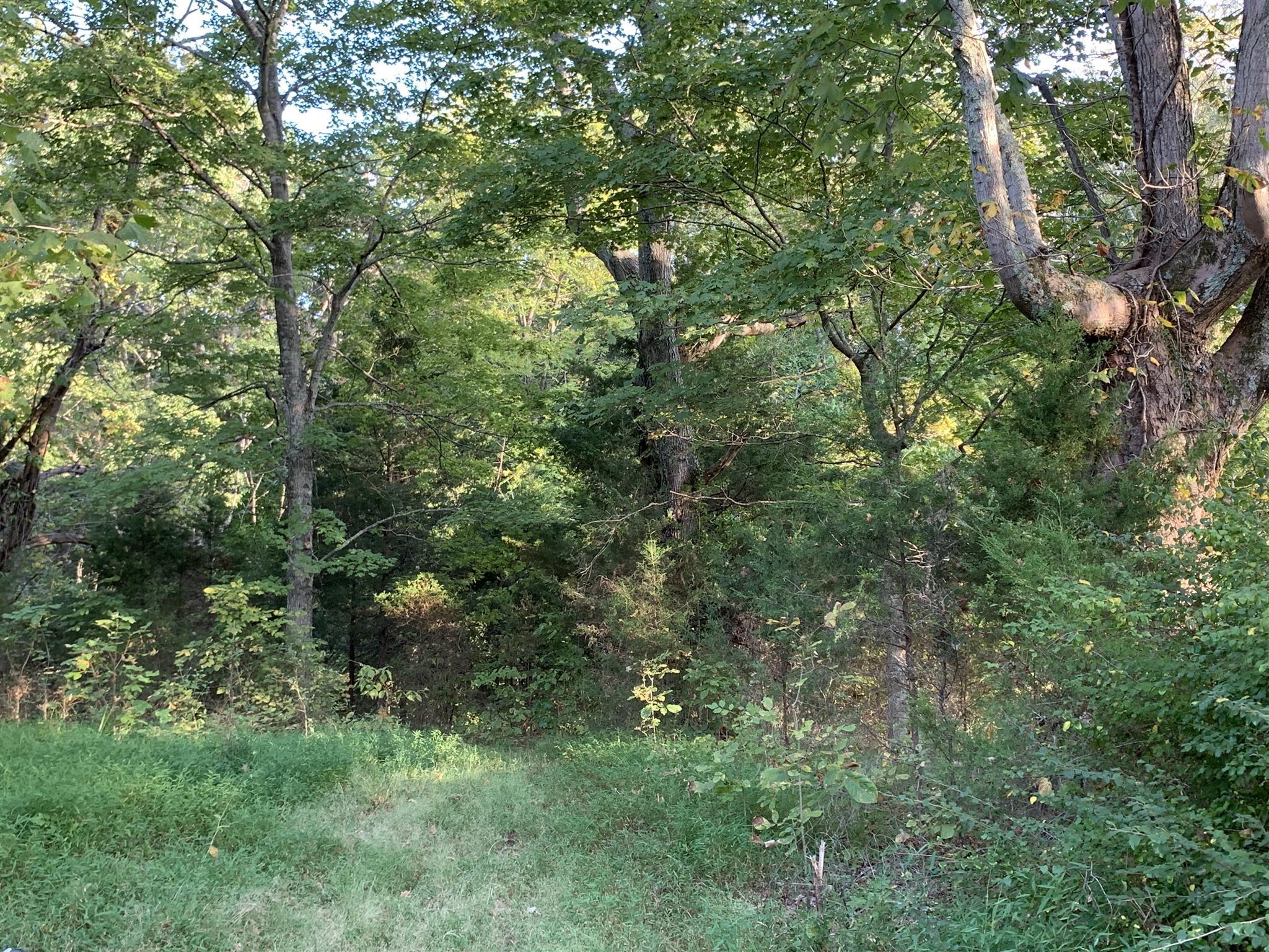 0 Lake Rd, Woodlawn, TN 37191 - Woodlawn, TN real estate listing