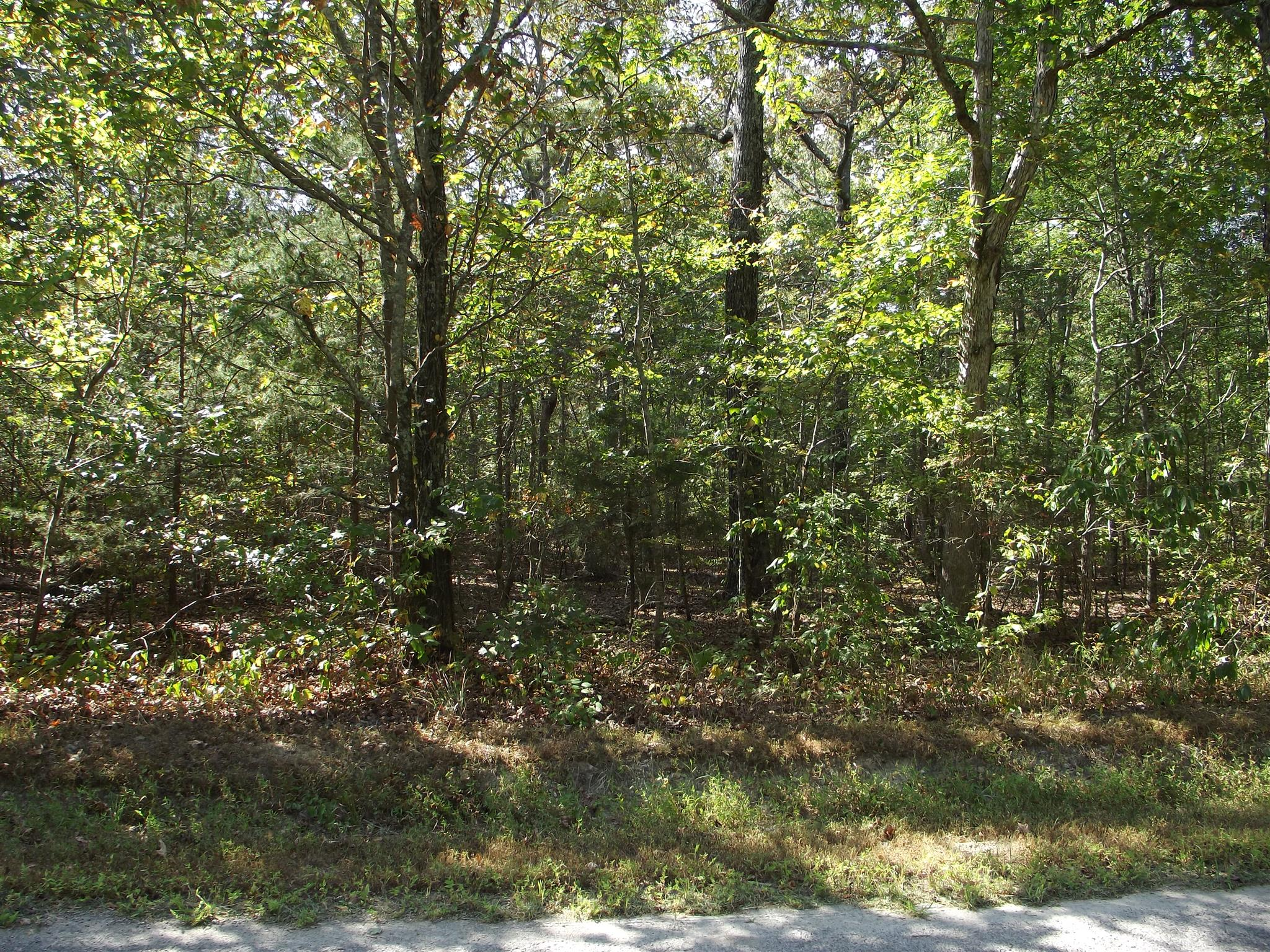 109 Pepper Rd, Taft, TN 38488 - Taft, TN real estate listing