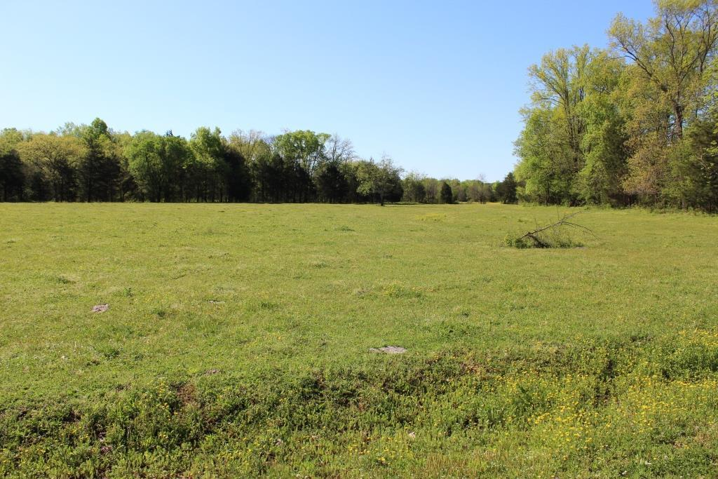 31.52 Acres Real Estate Listings Main Image