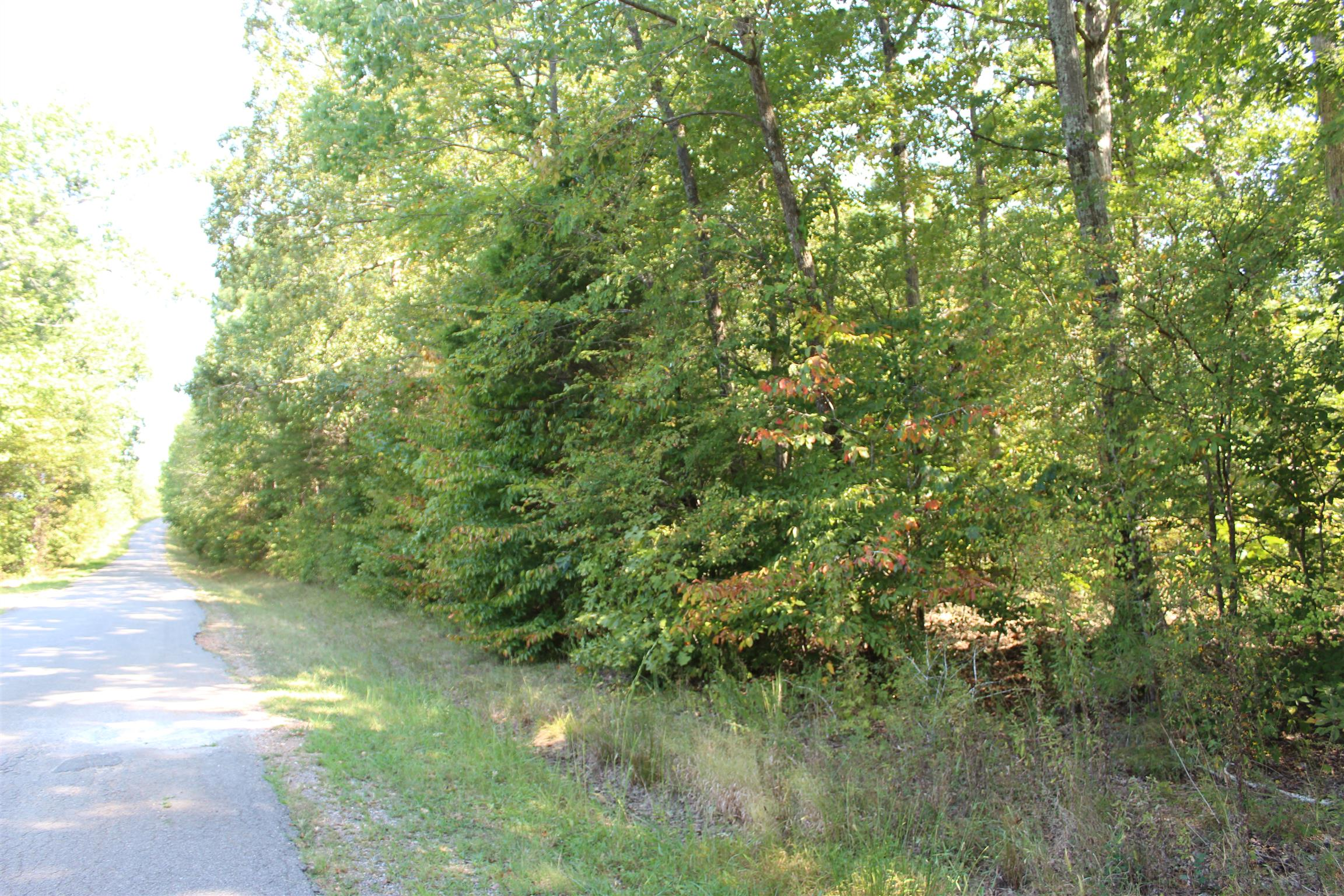 57 Twin Feathers Property Photo - Stewart, TN real estate listing
