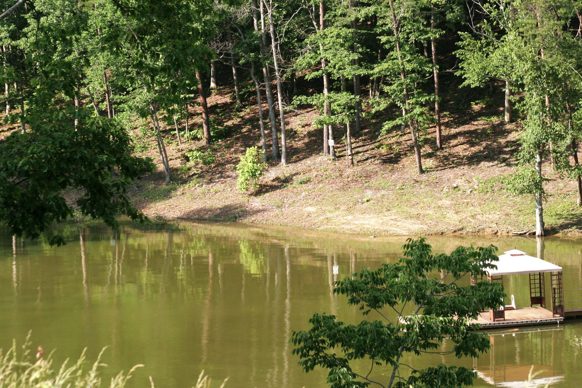 29 River View Drive, Dandridge, TN 37725 - Dandridge, TN real estate listing