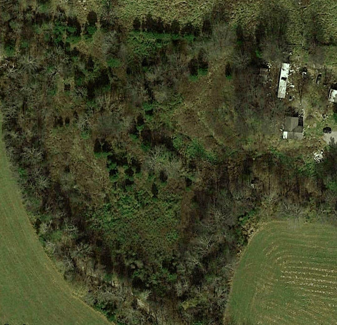 1230 Neal Rd, Watertown, TN 37184 - Watertown, TN real estate listing