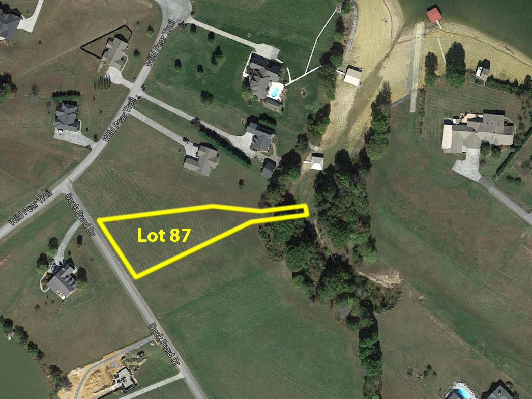 0 Duck Pond Drive Property Photo - Dandridge, TN real estate listing