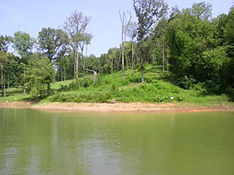 0 Lakeside Drive, White Pine, TN 37890 - White Pine, TN real estate listing