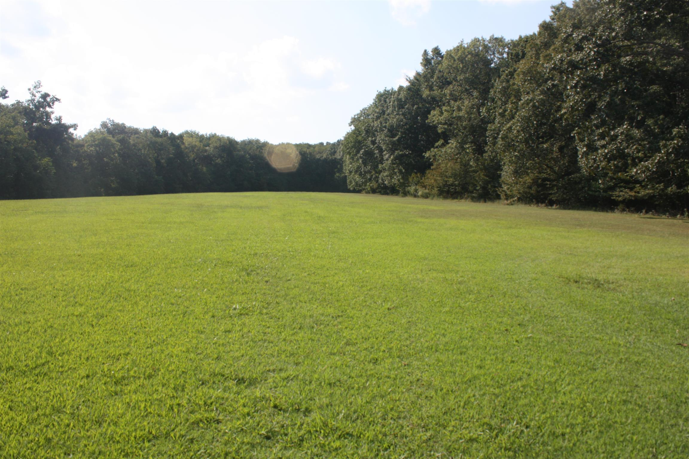 1741 Bakers Grove Rd, Hermitage, TN 37076 - Hermitage, TN real estate listing