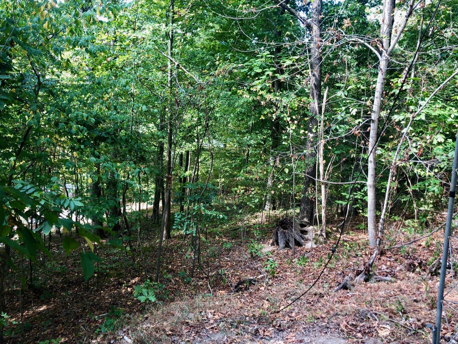 0 Kinnaird Access Rd Lot 169, Camden, TN 38320 - Camden, TN real estate listing