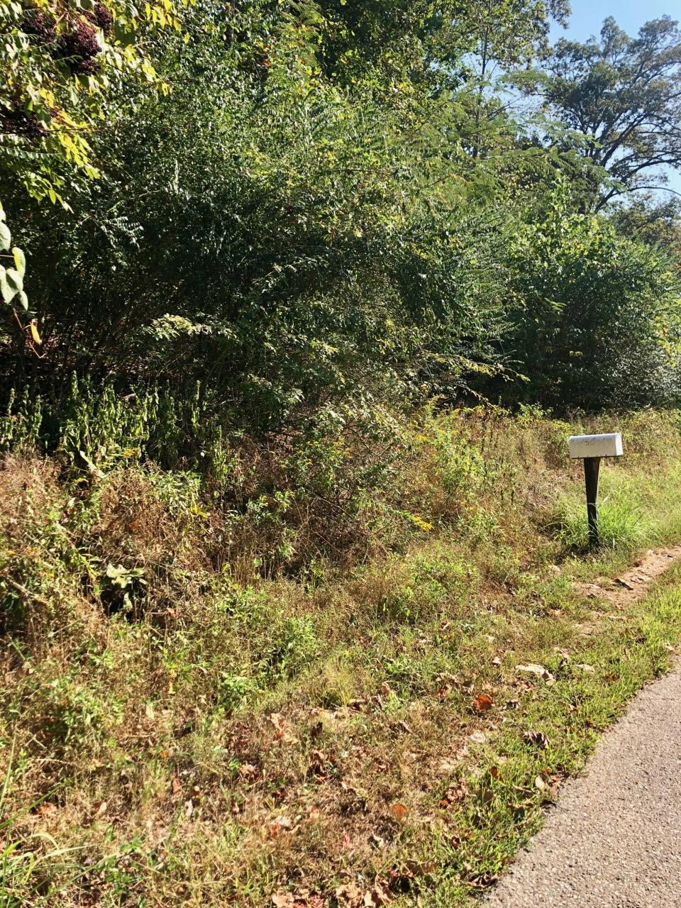 0 Kinnaird Rd Lot 154, Camden, TN 38320 - Camden, TN real estate listing