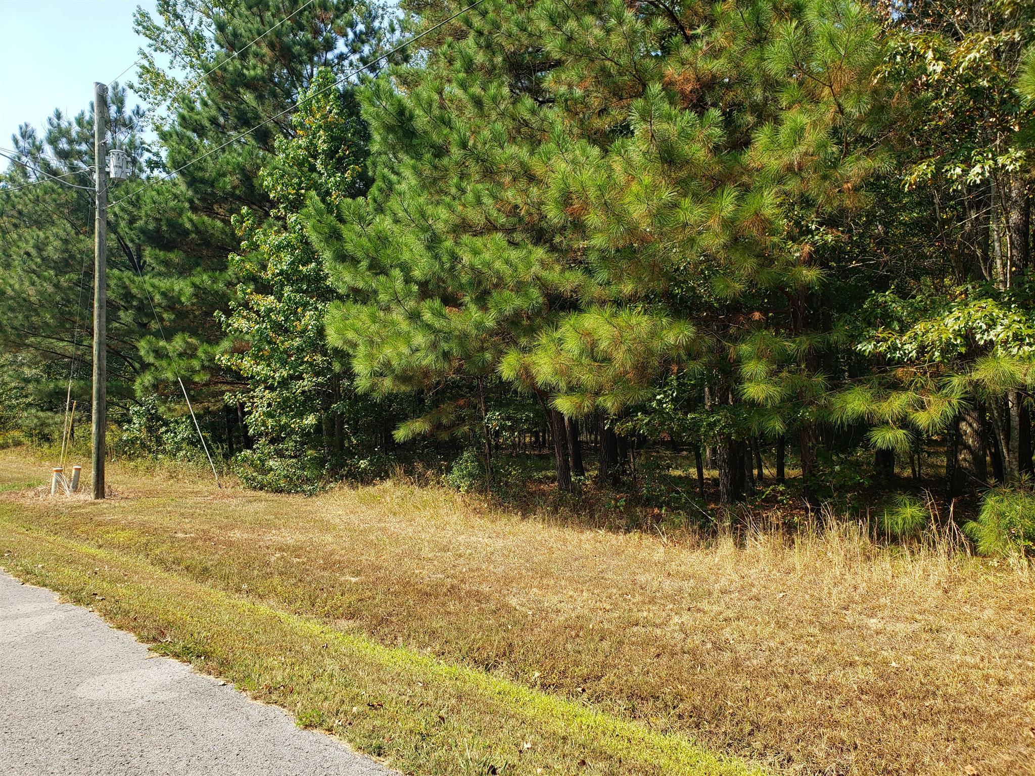 0 Mill Race Street, Ardmore, TN 38449 - Ardmore, TN real estate listing