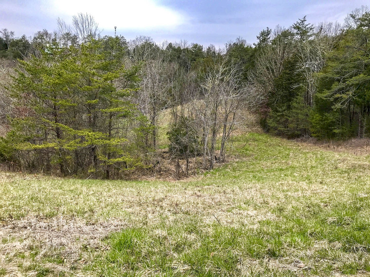 0 Debras Way Property Photo - Sevierville, TN real estate listing