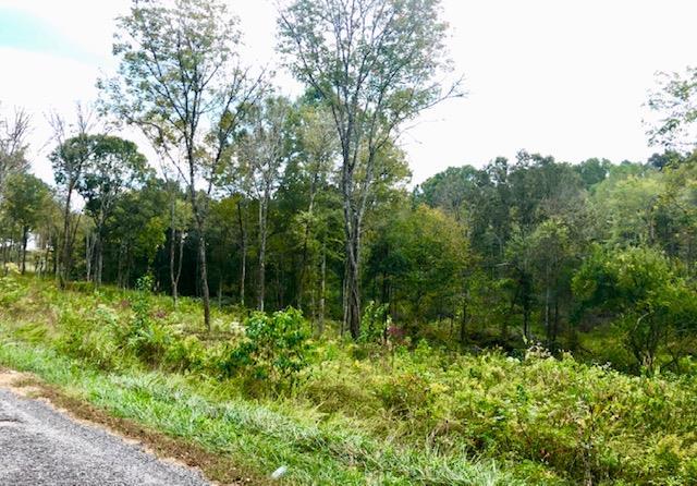0 Gladdice Rd, Pleasant Shade, TN 37145 - Pleasant Shade, TN real estate listing