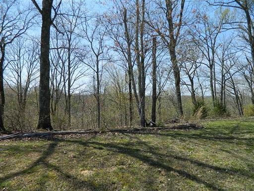 404 Heritage Trail, Smithville, TN 37166 - Smithville, TN real estate listing