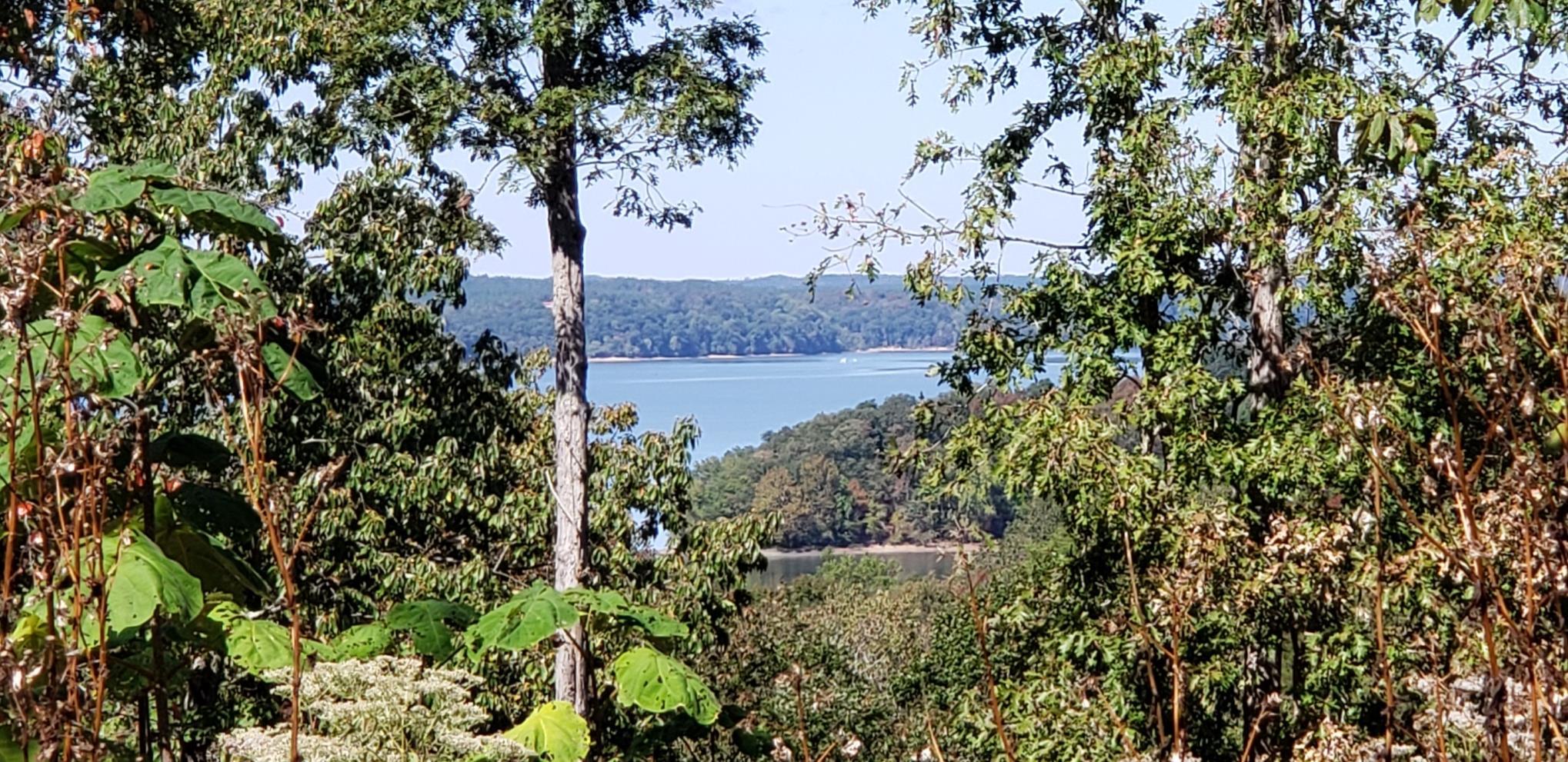0 Crestwood Dr, Waverly, TN 37185 - Waverly, TN real estate listing