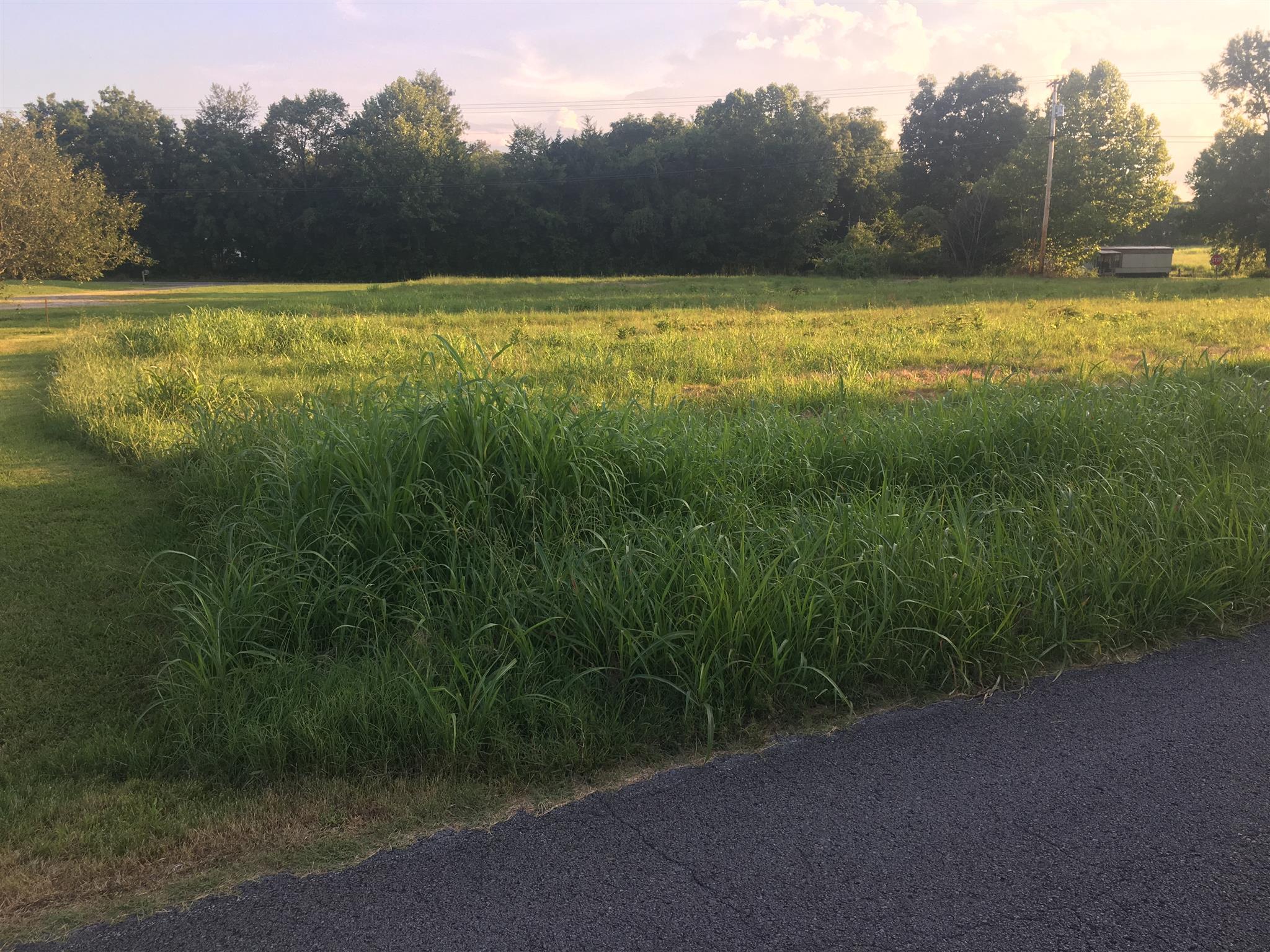 0 Old Columbia Road, Unionville, TN 37180 - Unionville, TN real estate listing