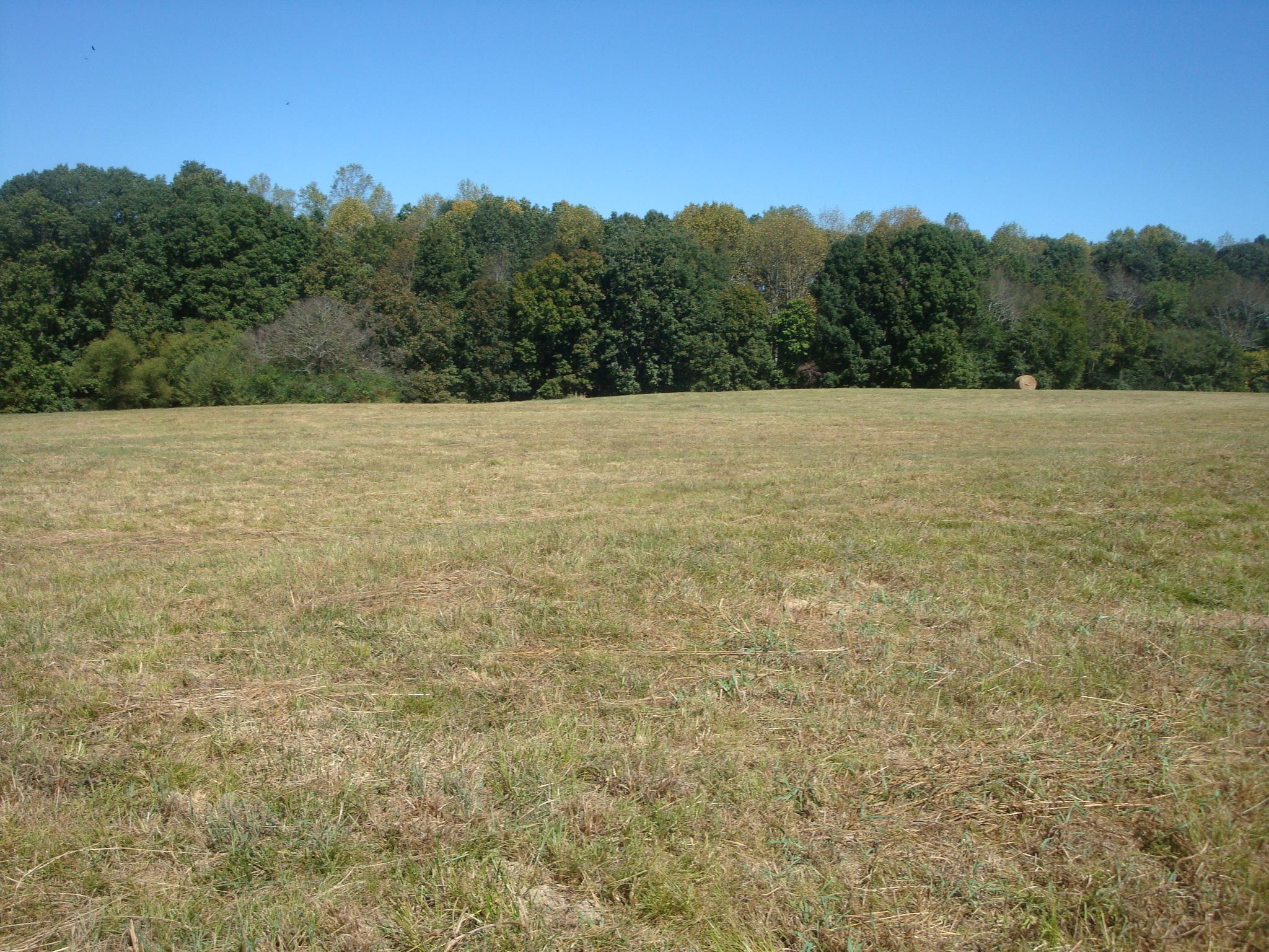 0 Rabbit Trail RD, Leoma, TN 38468 - Leoma, TN real estate listing