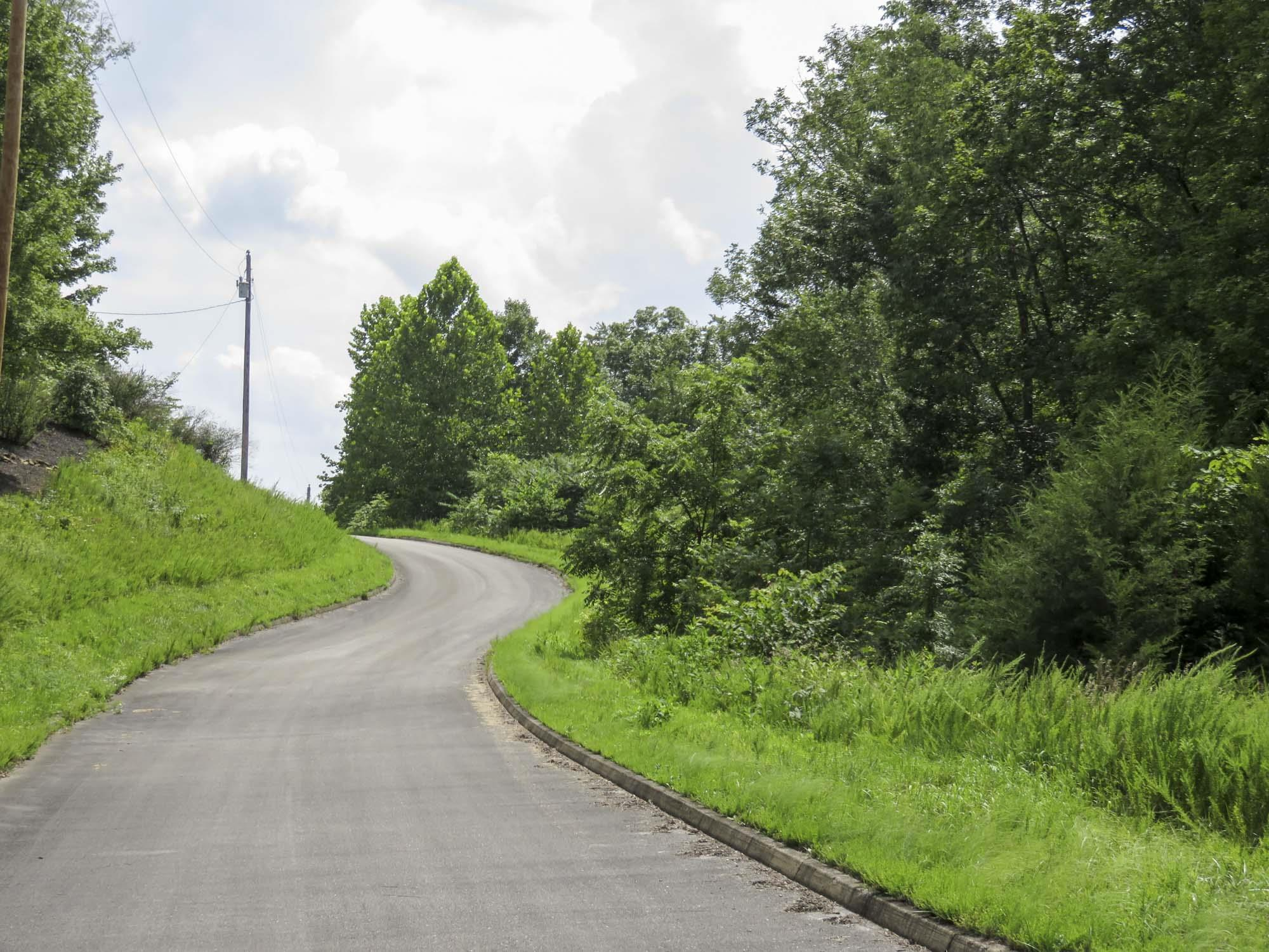 0 Timber Court Property Photo - Dandridge, TN real estate listing