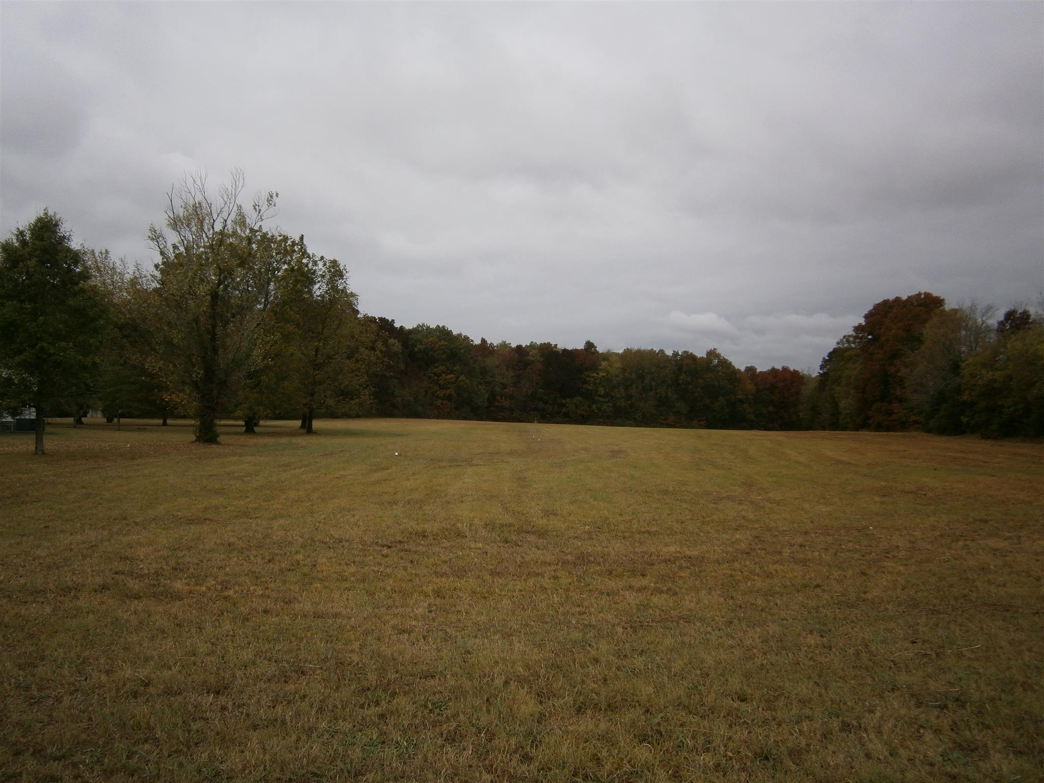 110 Maple Hill Rd Property Photo - Lebanon, TN real estate listing