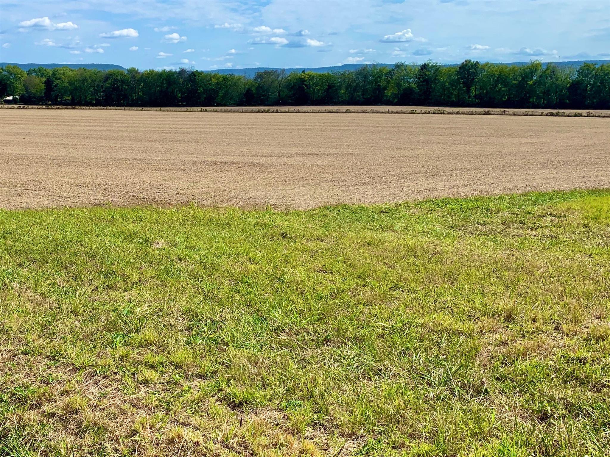 1786 Sherrell Rd, Hillsboro, TN 37342 - Hillsboro, TN real estate listing
