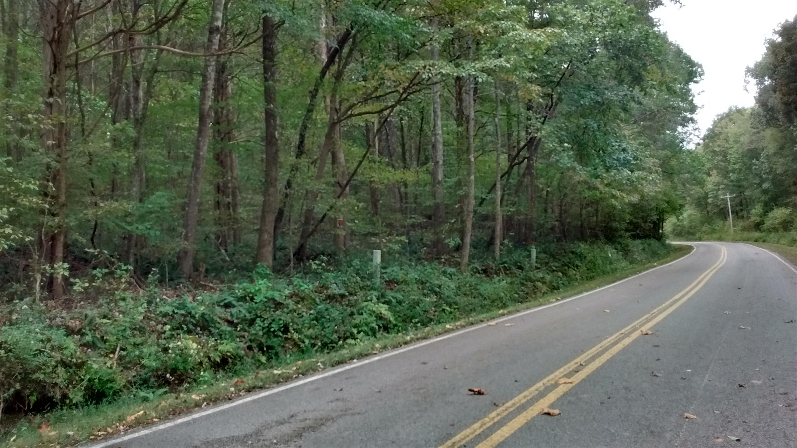 1 Brodies Landing Rd. Property Photo - Parsons, TN real estate listing