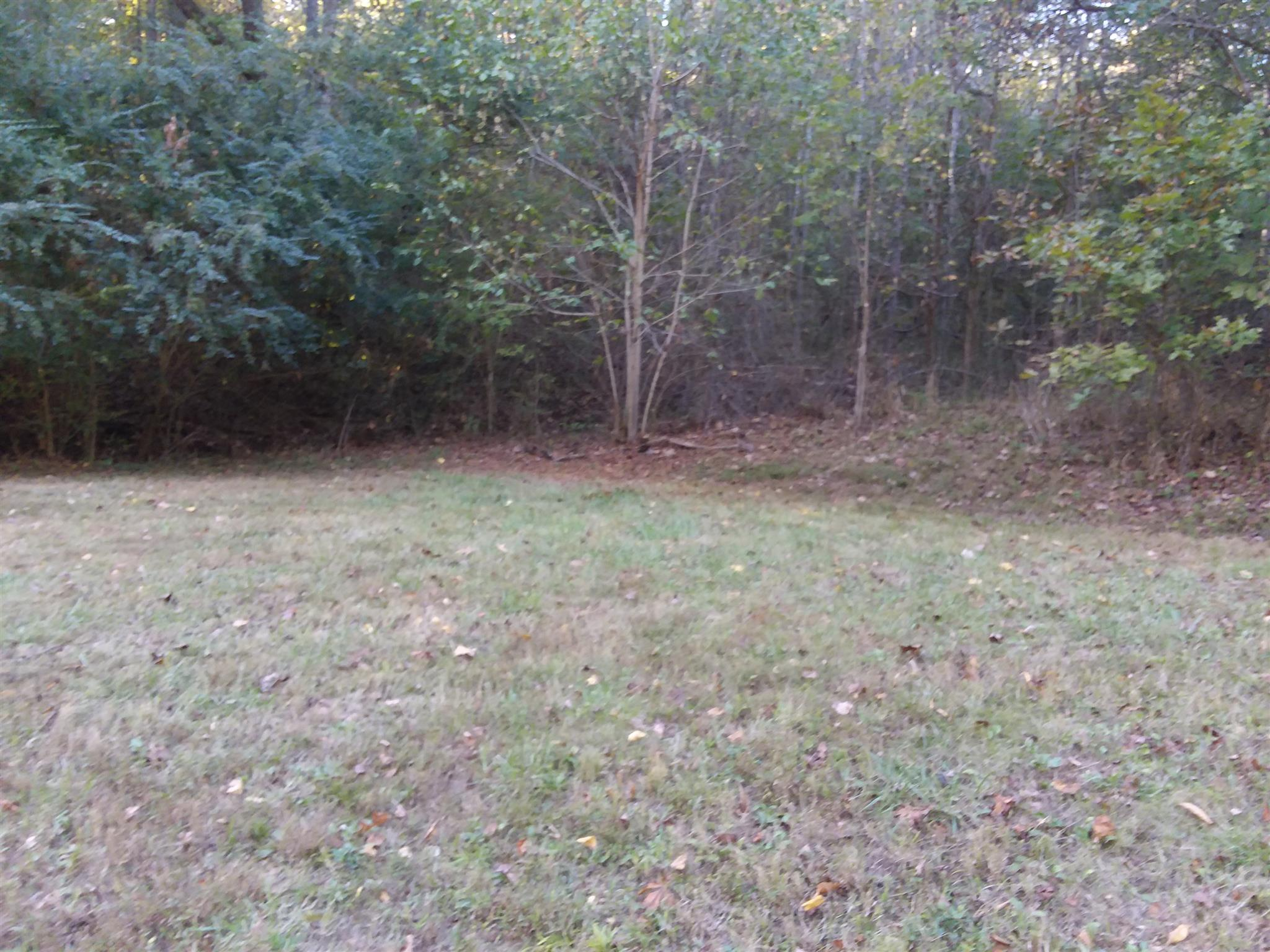 0 Lewis Circle, Dover, TN 37058 - Dover, TN real estate listing