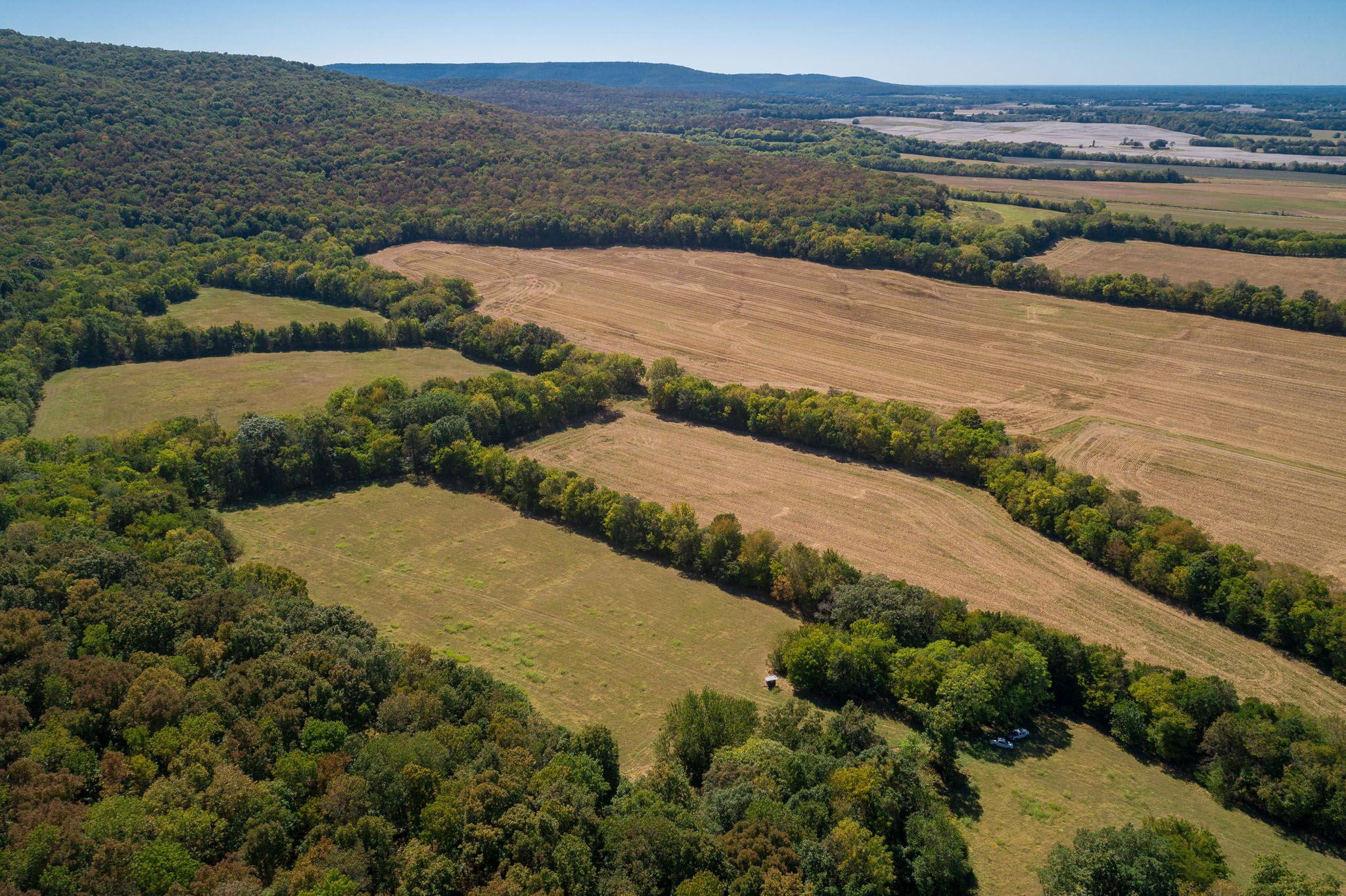 0 Hickory Grove Rd Property Photo - Huntland, TN real estate listing
