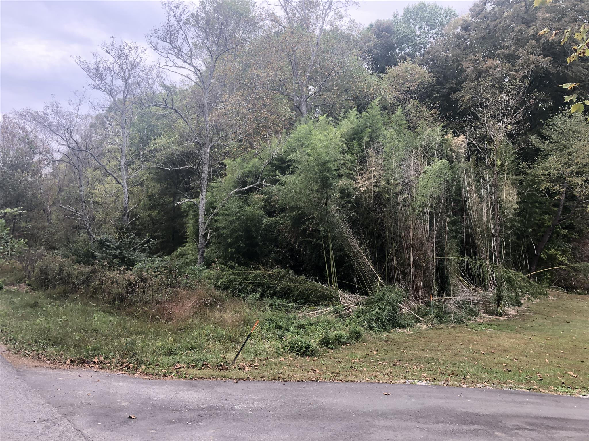 229 Clyde Wix Rd, Westmoreland, TN 37186 - Westmoreland, TN real estate listing