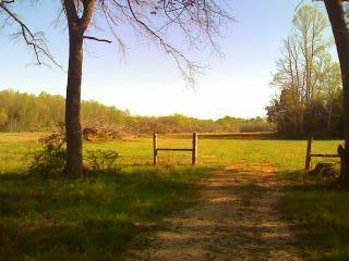 1230 Bethel Rd Property Photo - Smithville, TN real estate listing