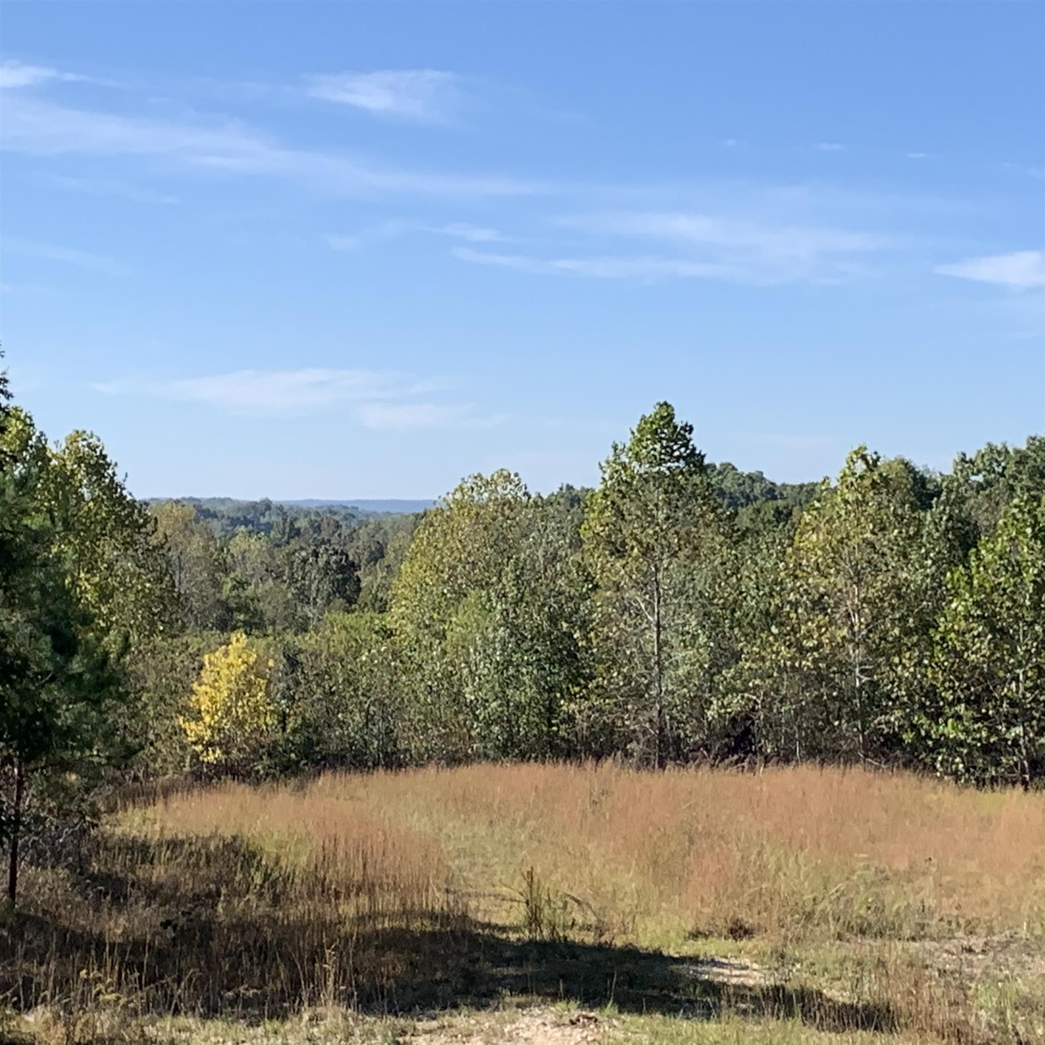 0 Deer Haven Road Property Photo - Indian Mound, TN real estate listing