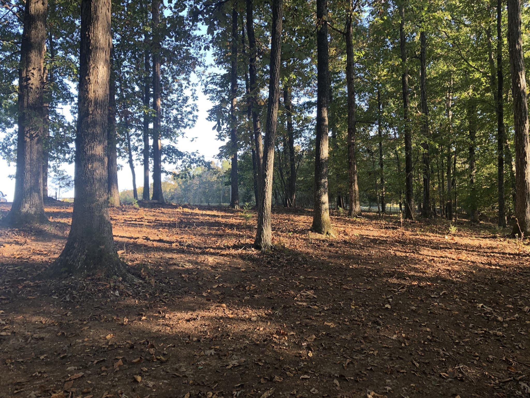 0 Ed Sanders Rd Property Photo - Lynchburg, TN real estate listing