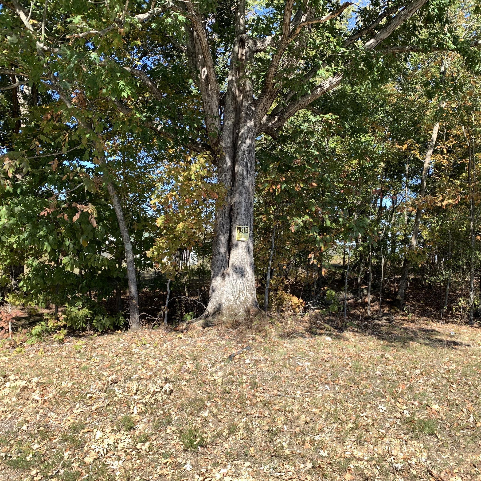 0 7 Mile Ridge Road Property Photo - Indian Mound, TN real estate listing