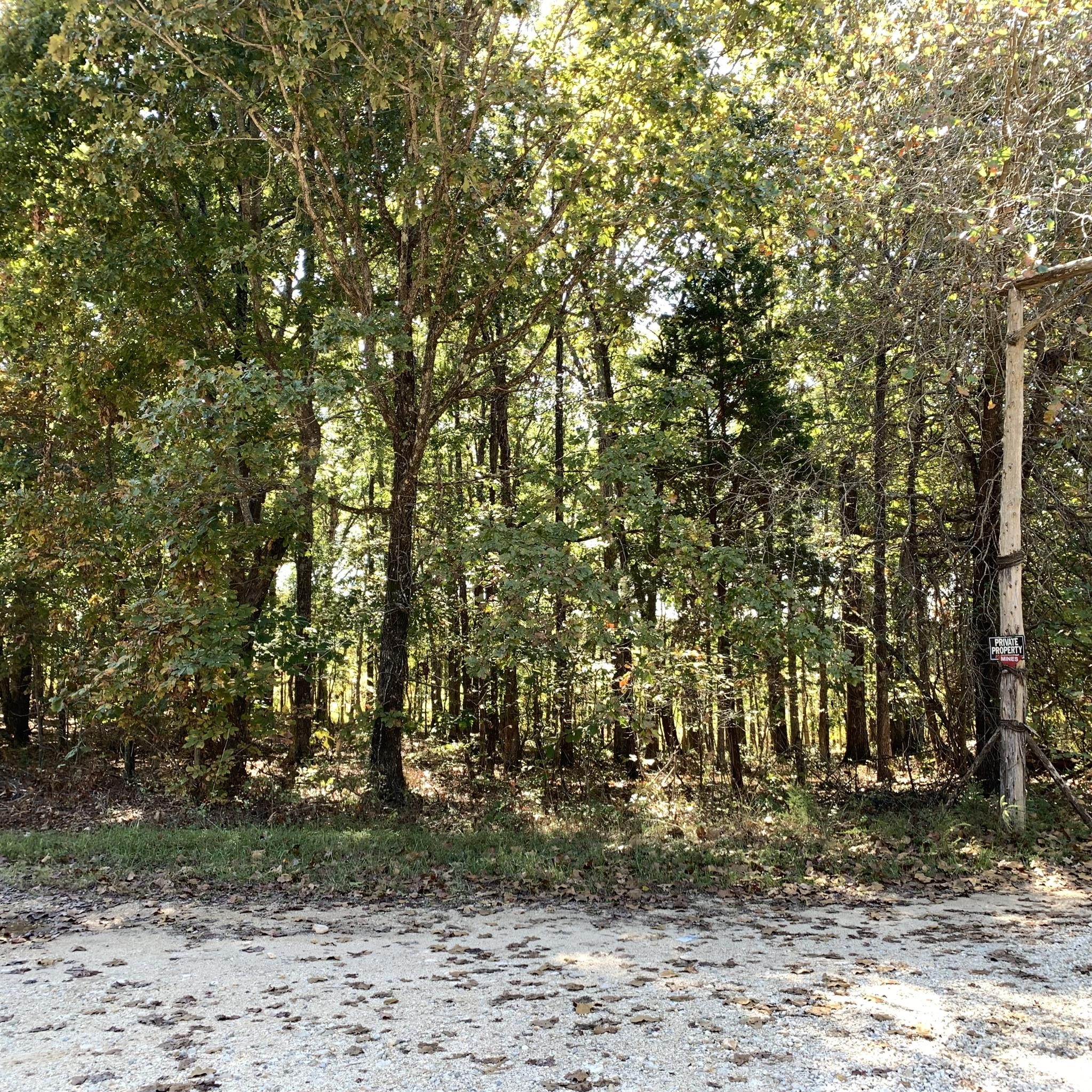 0 7 Mile Ridge Road Property Photo - Indian Mound, TN real estate listing