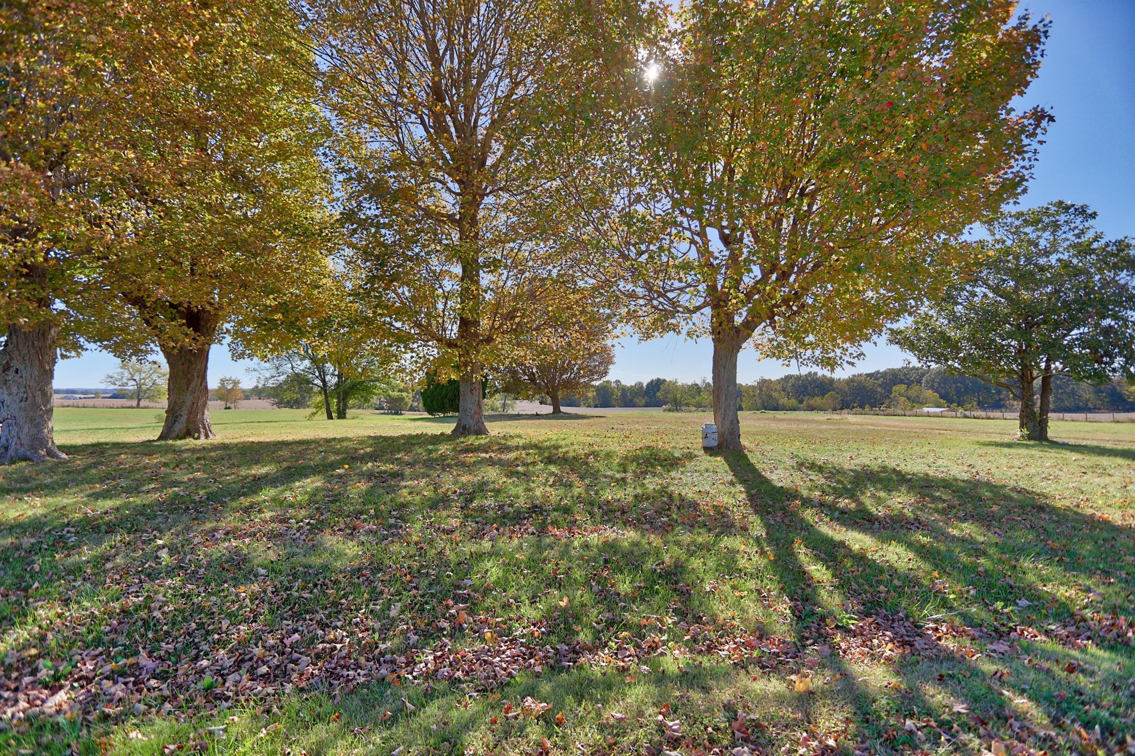 2027 Charlie Butts Rd, Franklin, KY 42134 - Franklin, KY real estate listing