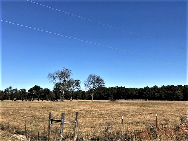 0 Borderline Rd, Flintville, TN 37335 - Flintville, TN real estate listing