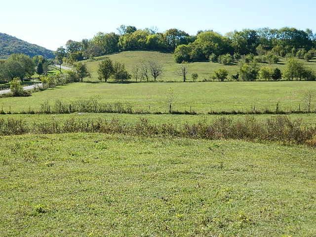 4317 Peyt-Trinity Rd, Franklin, TN 37067 - Franklin, TN real estate listing