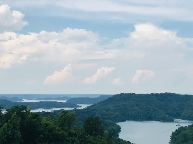 35C Lot 35C - Swan Ridge Rd, Hilham, TN 38568 - Hilham, TN real estate listing