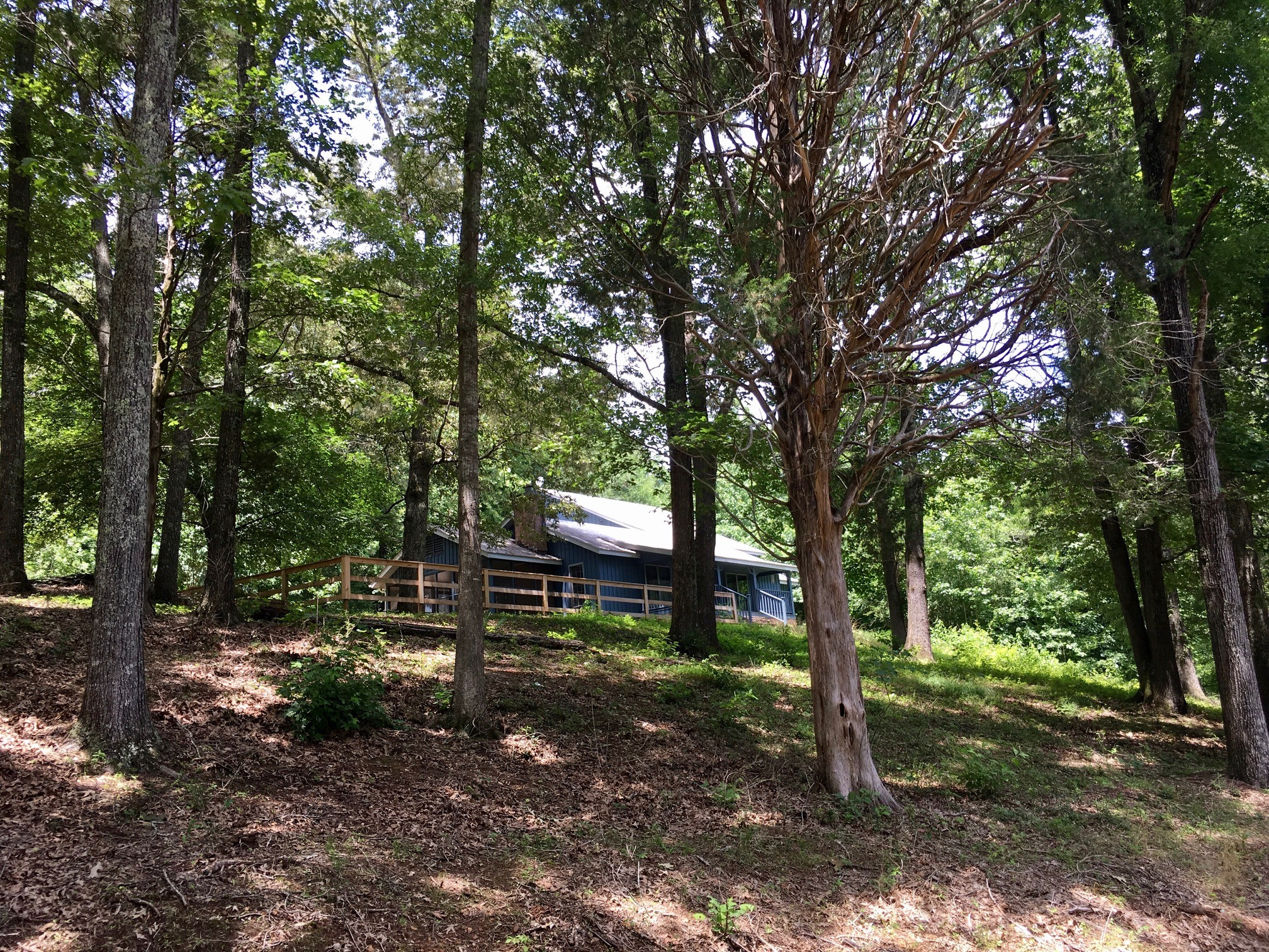 600 Snake Creek Loop, Adamsville, TN 38310 - Adamsville, TN real estate listing