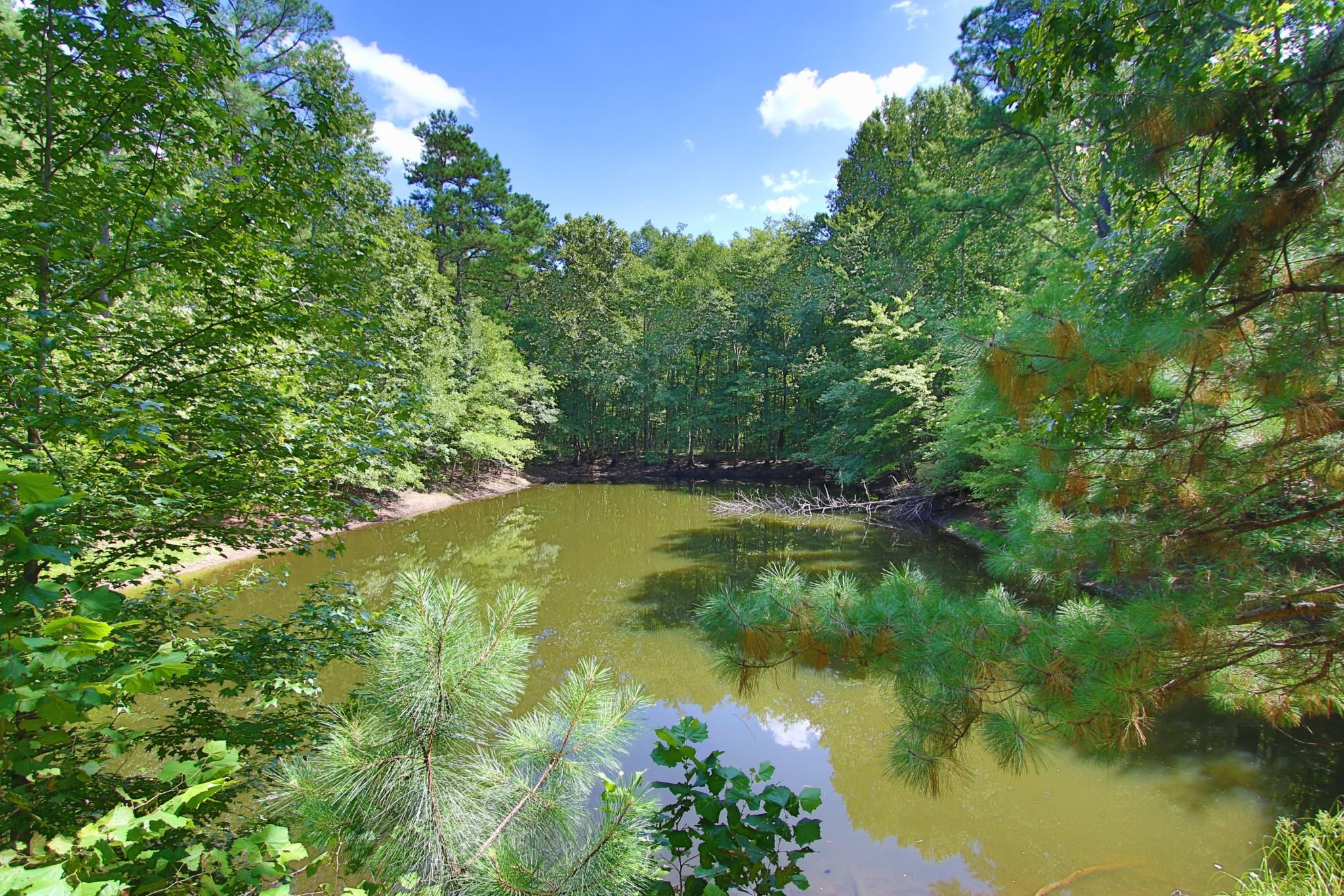 8388 S Tatum Creek Rd, Lyles, TN 37098 - Lyles, TN real estate listing