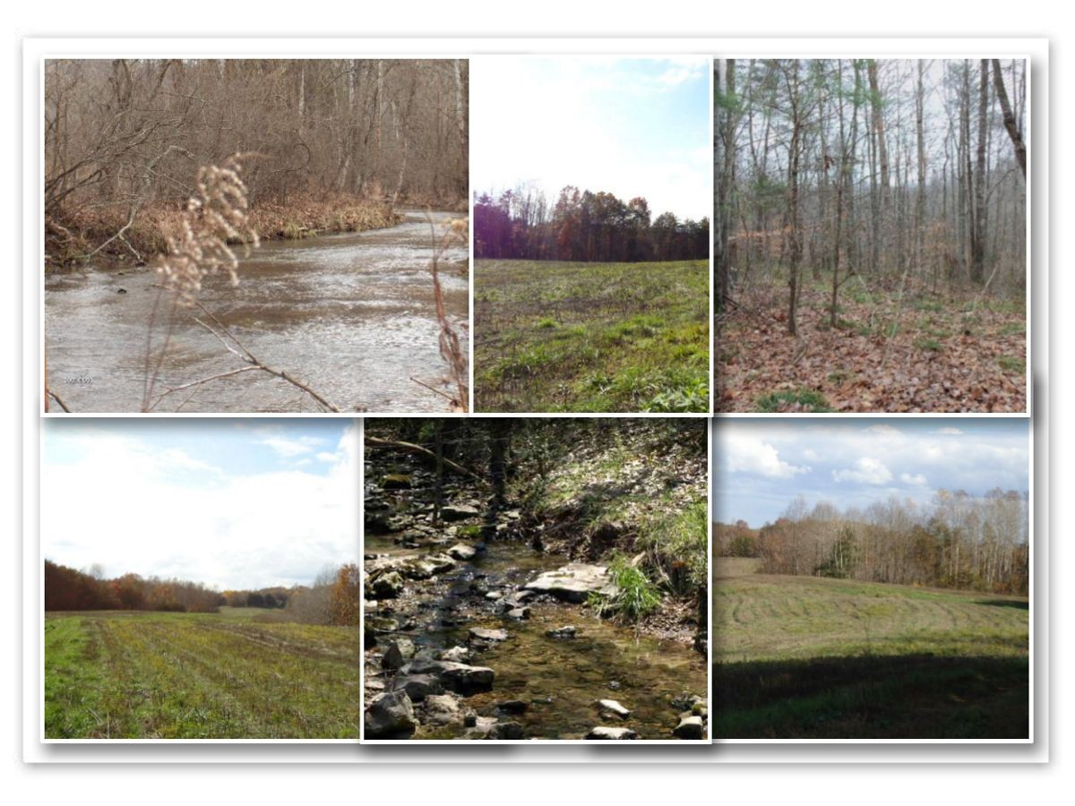 131 .61 ac McCormick Rdg Rd. W Property Photo - Red Boiling Springs, TN real estate listing