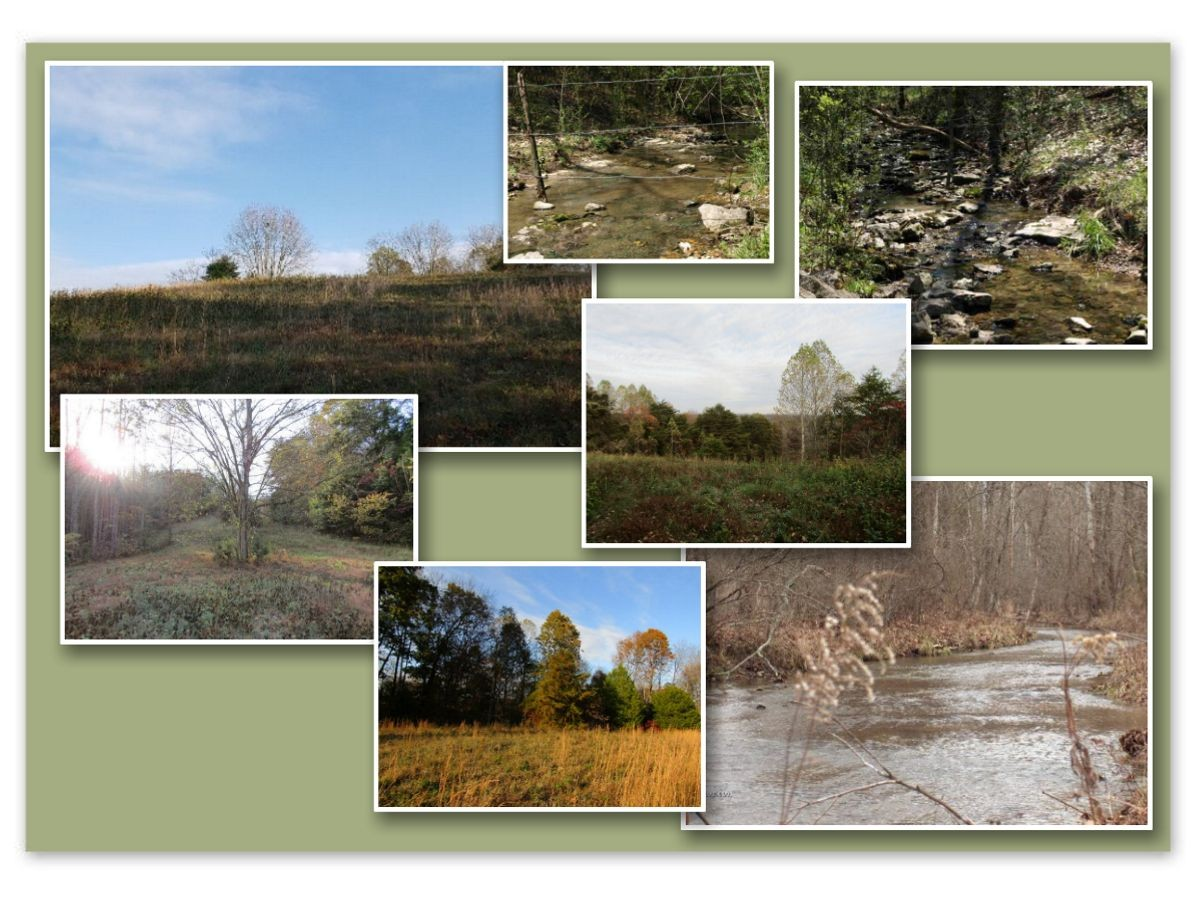 0 McCormick Ridge Rd Property Photo - Red Boiling Springs, TN real estate listing