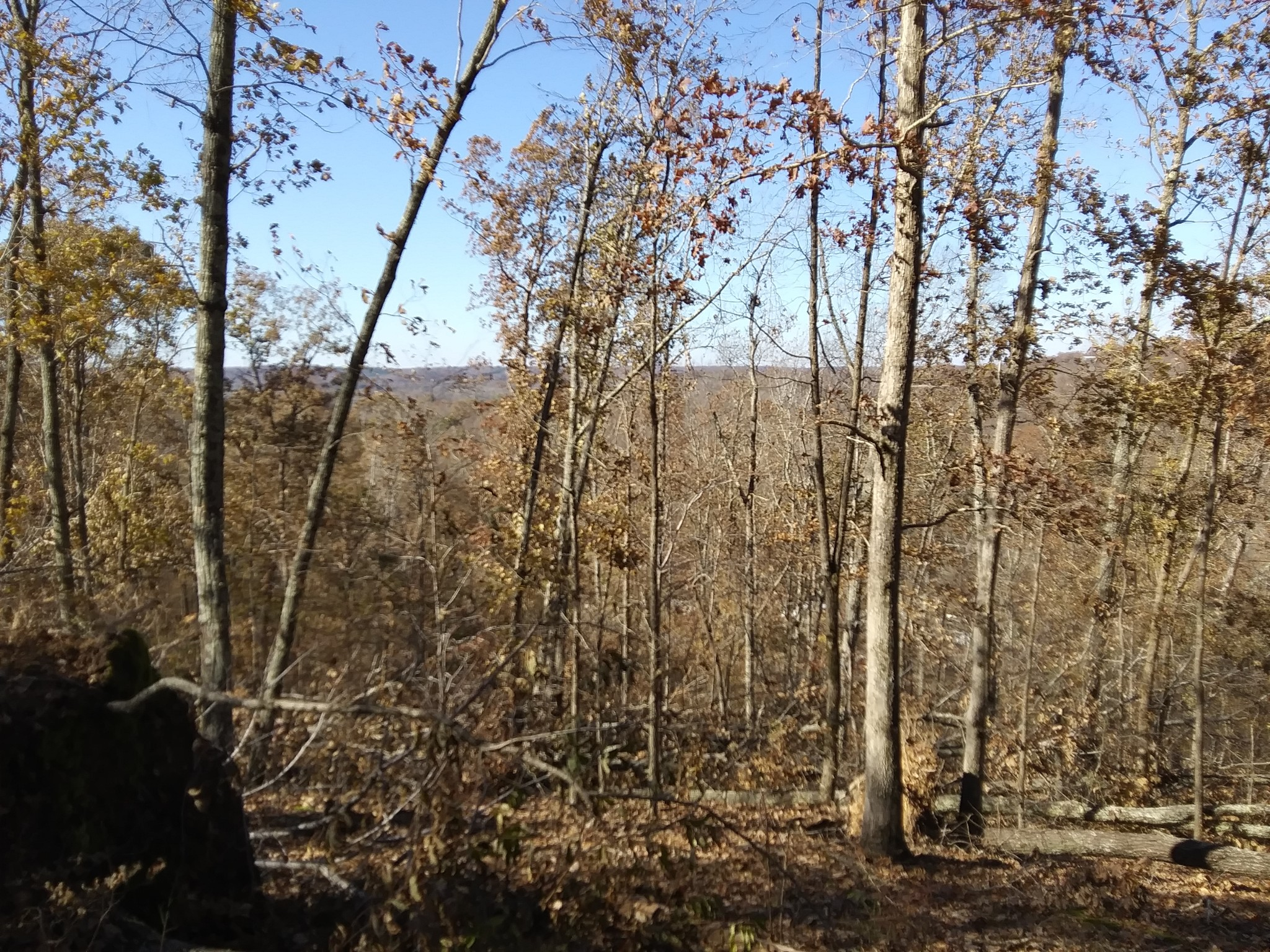 0 Britt Rd Property Photo - Lobelville, TN real estate listing