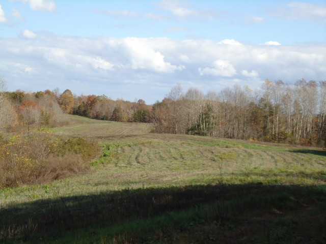 0 McCormick Ridge Road Property Photo - Red Boiling Springs, TN real estate listing