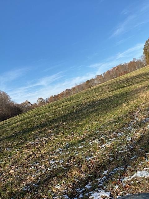 0 Happy Hollow Property Photo - Red Boiling Springs, TN real estate listing