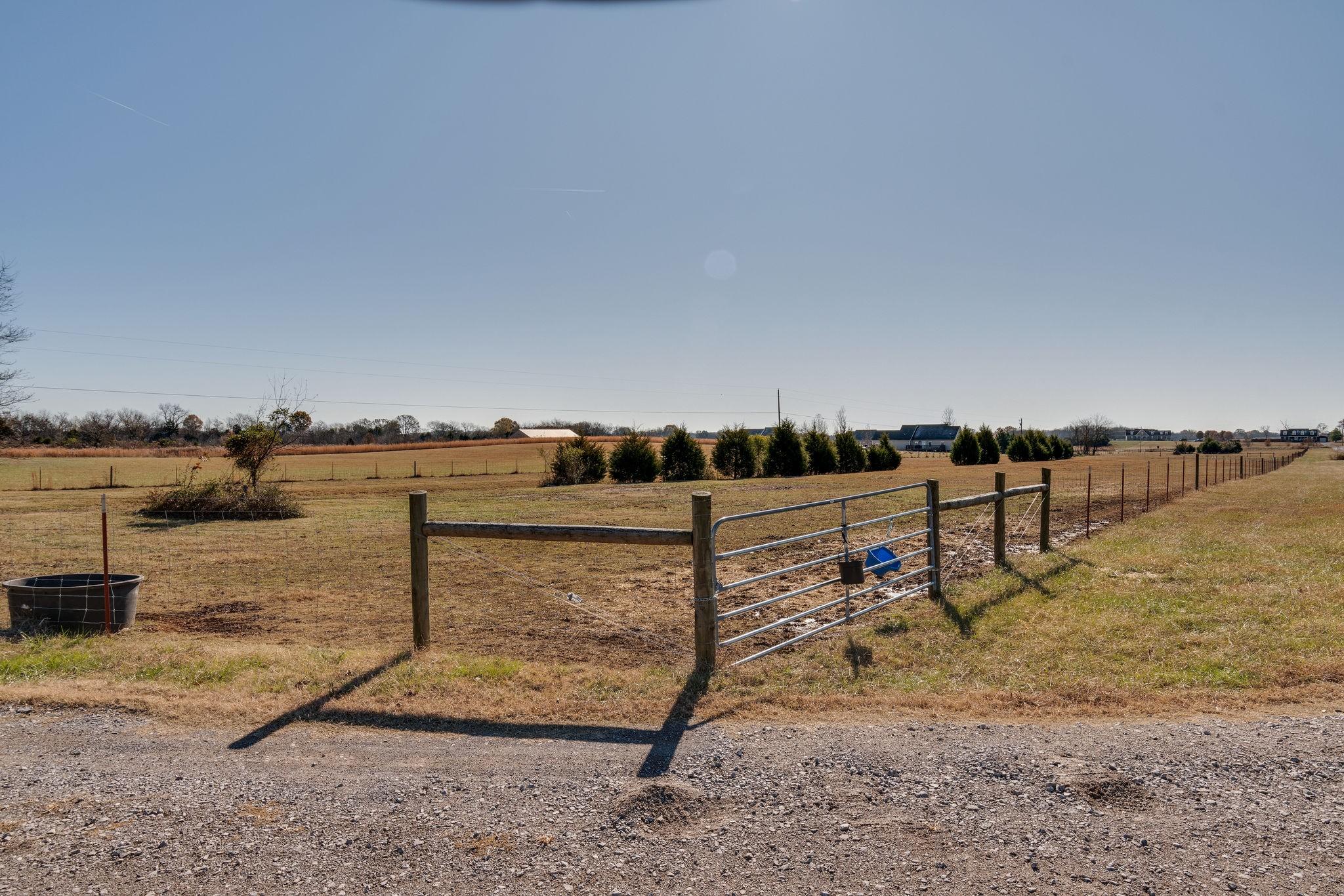 1882 Sawgrass Ln, Chapel Hill, TN 37034 - Chapel Hill, TN real estate listing