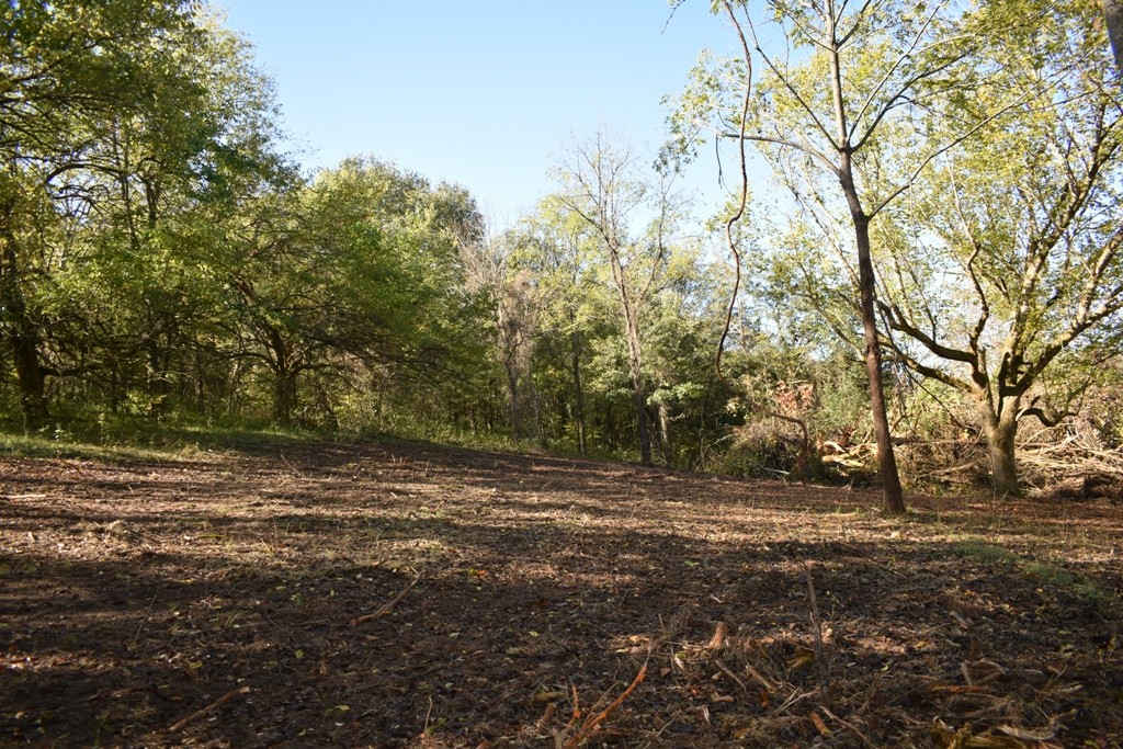 0 Webster Rd Property Photo - Buffalo Valley, TN real estate listing
