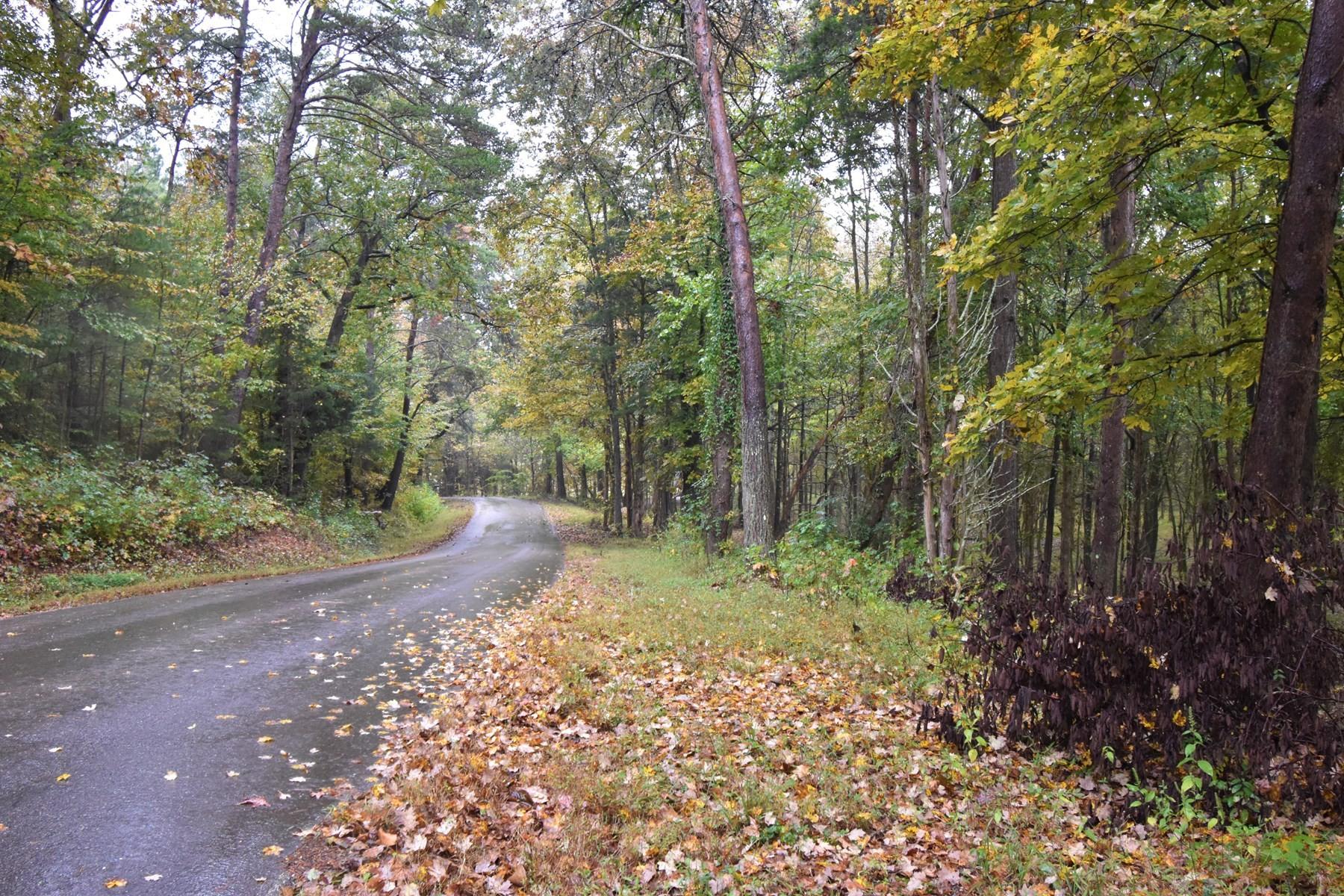 576 Yarbro Landing Ln, Decaturville, TN 38329 - Decaturville, TN real estate listing