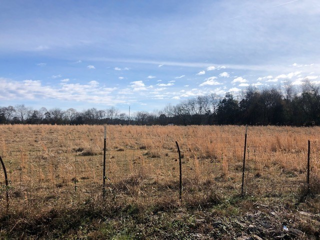 1 Fairfield Pike Property Photo - Shelbyville, TN real estate listing