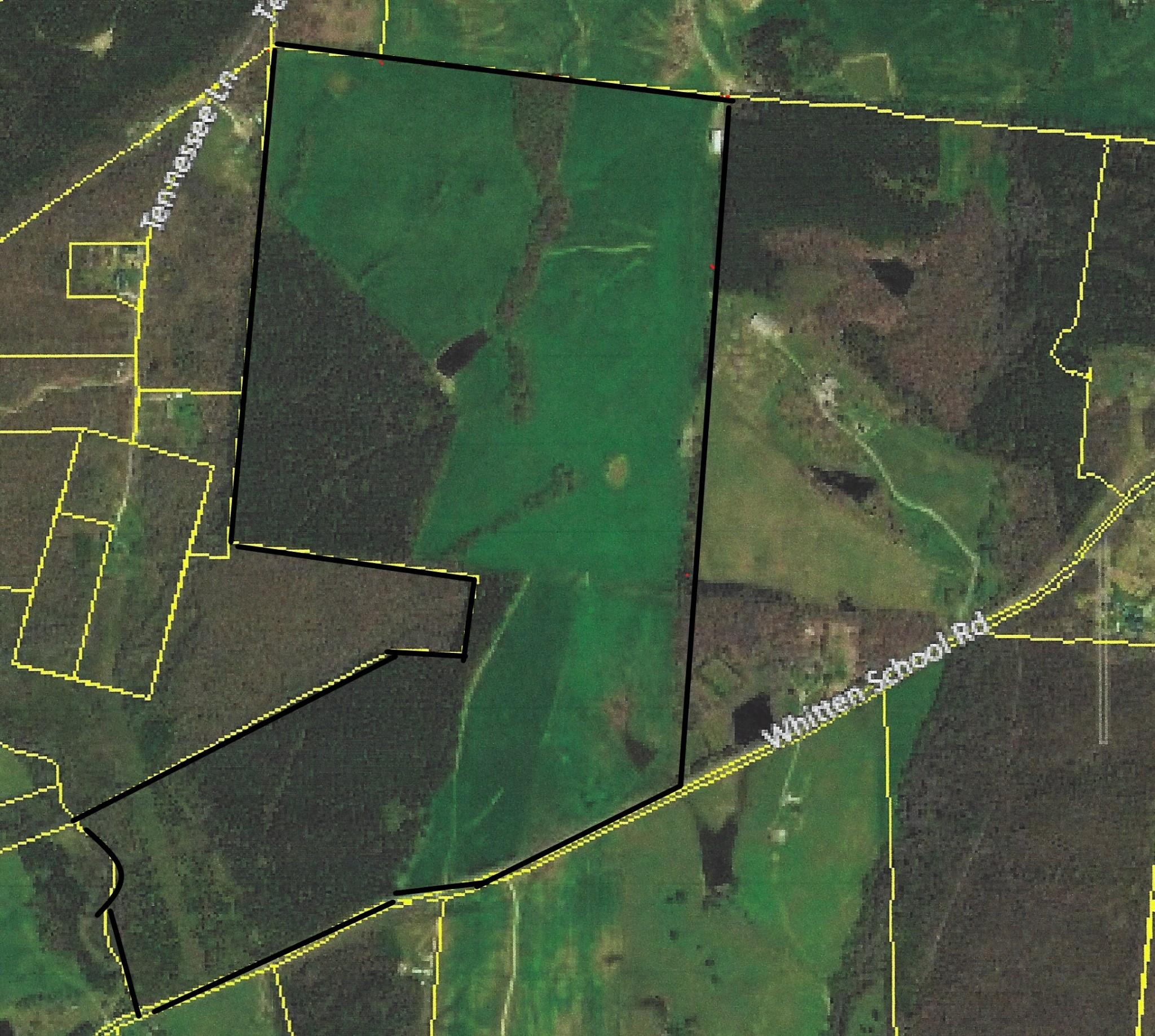 0 Whitten School Rd Property Photo - Iron City, TN real estate listing